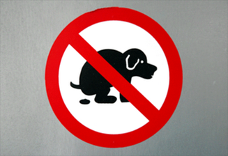 20110901142219-prohibido-perro-cagando